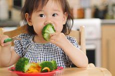 Sebelum Terlambat, Pahami Pentingnya Gizi Mikro untuk Kesehatan Anak