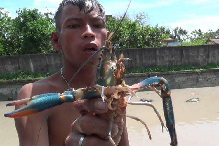 Seorang warga memerlihatkan lobster yang ditangkap di Jembatan Trem Pangkal Pinang, Kepulauan Bangka Belitung.