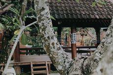 Tempat Wisata Dekat Angkringan Griyo Aji Somo Wonogiri, Ada Bali Lainnya