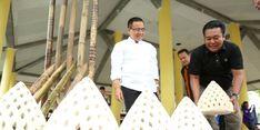 Ini yang Baru... Festival Bambu Bakal Meriahkan Festival Banyuwangi!