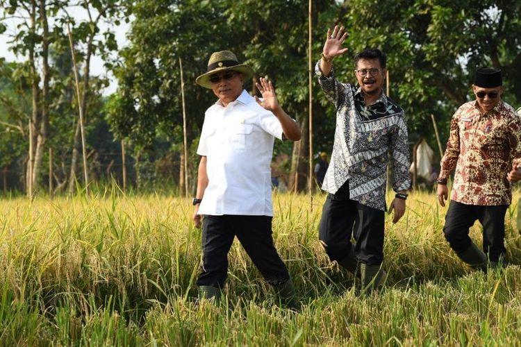 Lindungi Lahan Pertanian, Pemkab Lumajang Komitmen Dukung LP2B