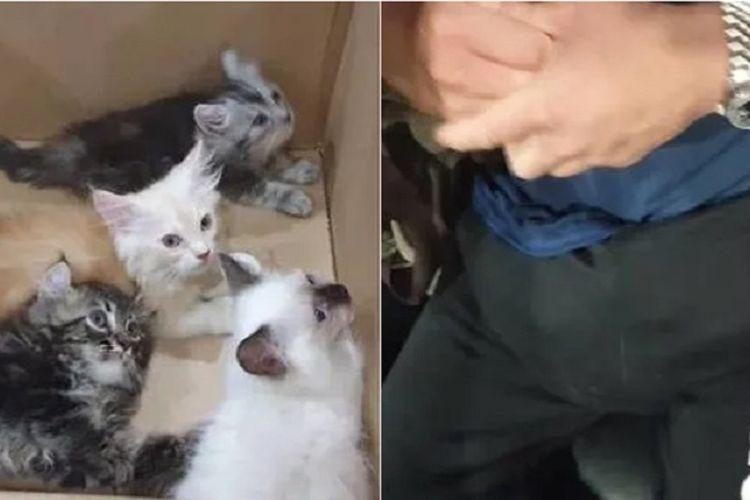 Justin Ng ketika dihentikan polisi di pos perbatasan Singapura pada 2 Januari 2019. Ng ditangkap karena menyembunyikan 4 ekor anak kucing di dalam celananya.