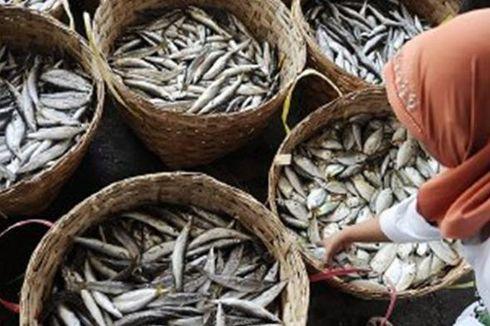 Bantah Pengusaha, KKP Nilai Sektor Perikanan Sedang Menggeliat