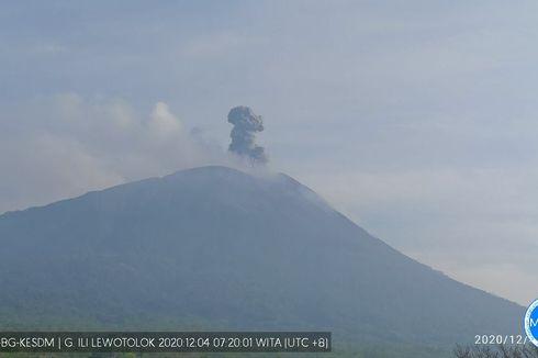 Gunung Ile Lewotolok Meletus 3 Kali pada Hari Ini