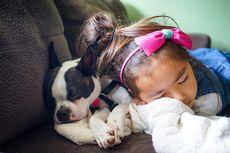 Studi Ungkap Anak Tidur Lebih Tenang Bersama Hewan Peliharaan