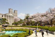 Beasiswa S2/S3 Korea, Tunjangan Hidup per Bulan Rp 12 Juta