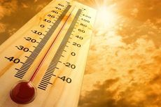Suhu di Beberapa Kota di Indonesia Meningkat, Apa Kata BMKG?