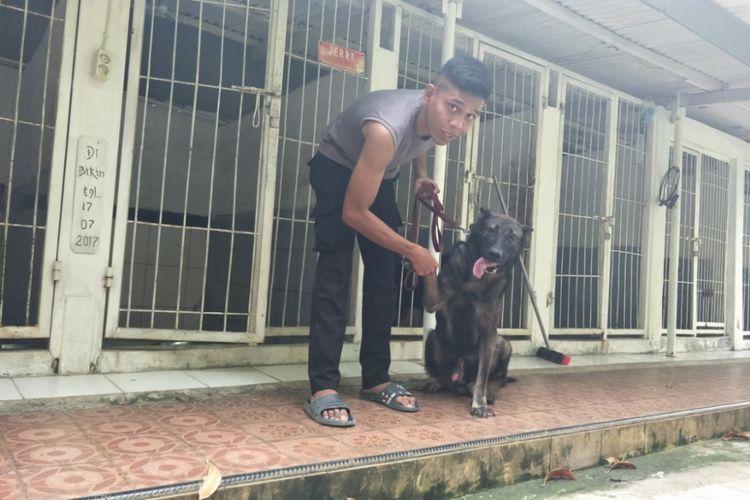 Seorang polisi pawang bersama anjing pelacak binaannya di Mako Unit K9 Direktorat Sabhara Polda Metro Jaya, Palmerah, Jakarta Barat, Kamis (3/5/2018).