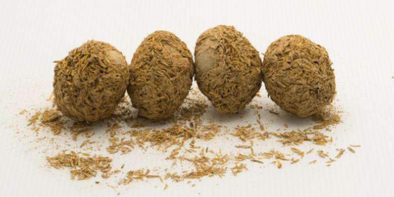 Proses pembuatan Century Egg secara tradisional, yakni membalut telur yang telah dilumuri bahan tertentu menggunakan gabah padi