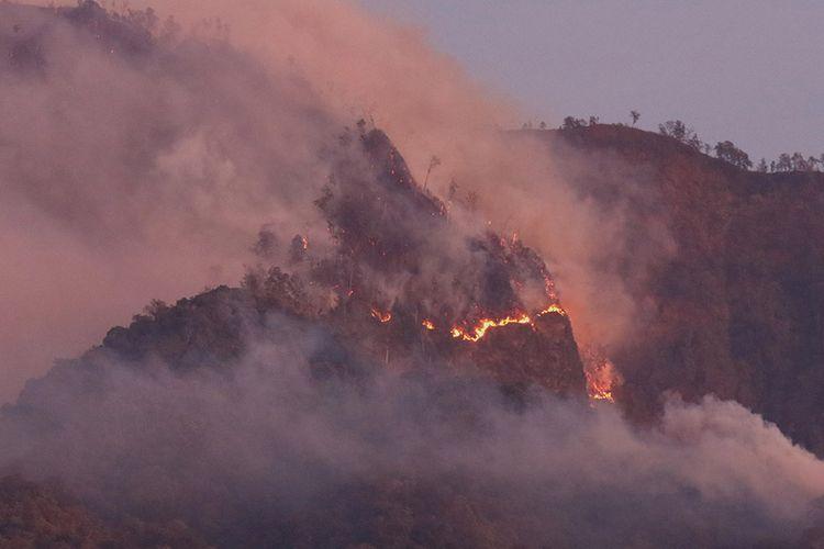 Pemadaman Kebakaran di Pegunungan Ijen Masih Terus Dilakukan