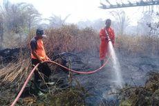 Gara-gara Seorang Warga Bakar Sampah, Sekitar 1 Hektare Lahan Sawit Terbakar