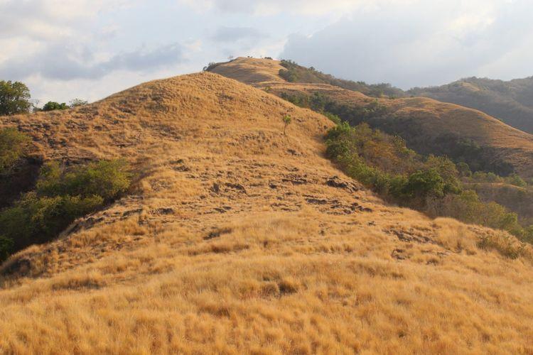 Pengunjung dapat berfoto dengan latar bukit di bagian selatan.