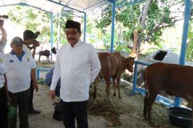 Wakil Gubernur DKI Jakarta Djarot Saiful Hidayat memantau kondisi rumah pemotongan hewan (RPH) sementara di Masjid Al-Azhar, Jakarta Timur, Senin (12/9/2016). RPH sementara ini akan dipakai sebagai percontohan agar pemotongan hewan kurban tahun depan bisa lebih baik dan higienis.