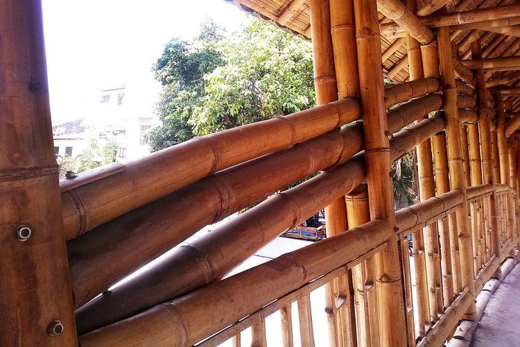 Ilustrasi bambu