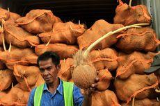 Thailand Tolak 25 Kontainer Kelapa Asal Sumsel karena Bertunas