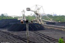 Badan Geologi: Sumber Daya Batu Bara Indonesia 143 Miliar Ton