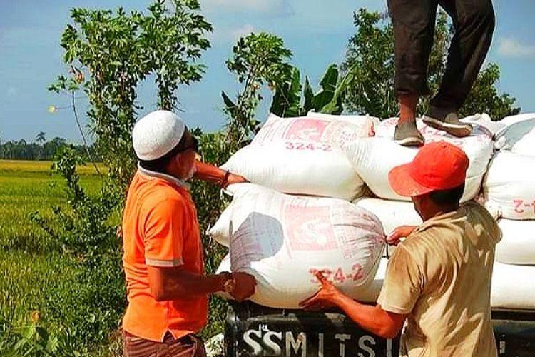 Petani mengangkut padi ke mobil pengangkutan di Desa Samakurok, Kecamatan Tanah Jambo Aye, Kabupaten Aceh Utara, Minggu (24/3/2019)
