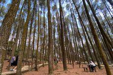 Seluruh Tempat Wisata Bantul Buka, Wisatawan Diimbau Gunakan Transaksi Nontunai