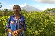 Kisah Pengungsi Gunung Agung 1963: Gelap dan Kami Ngungsi Bawa Obor