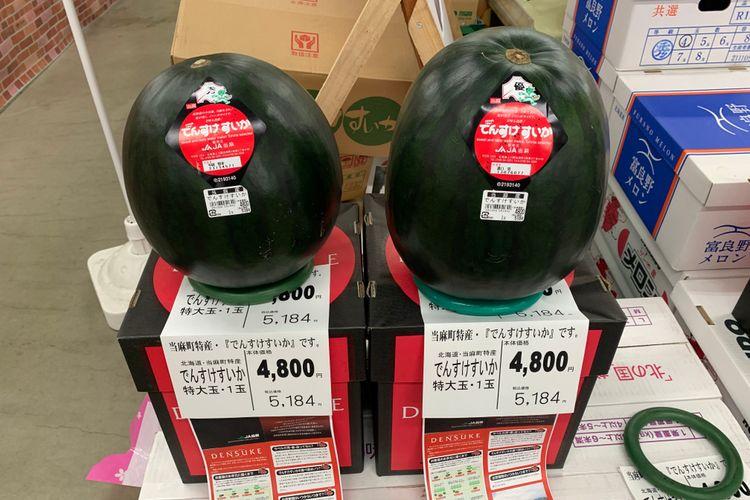 Ilustrasi semangka Densuke.