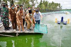 Kawasan Shrimp Estate Dibangun, Gubernur Kalteng Ingin Jokowi Lakukan Panen Perdana