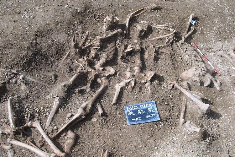 Kerangka bangsa Viking di sebuah pemakaman massal. Peneliti ungkap asal-usul penyakit cacar, dari pemeriksaan DNA pada tulang dan gigi ditemukan virus cacar kuno.