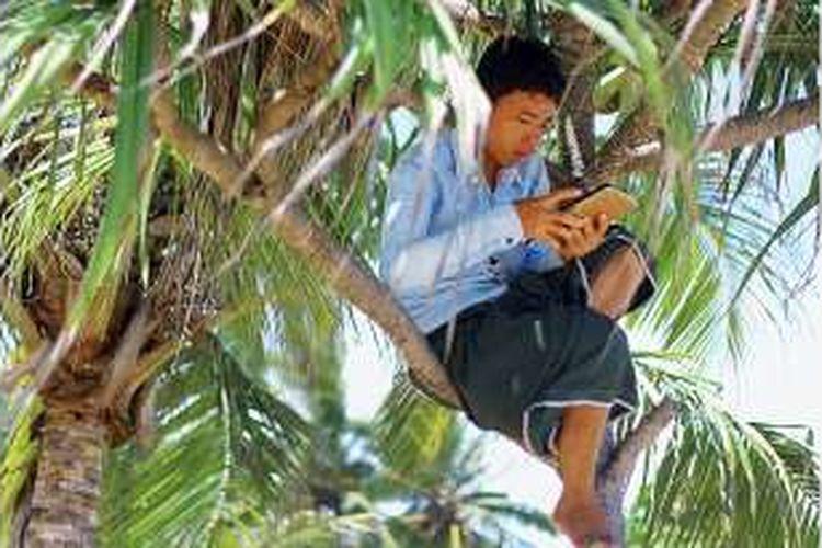 Warga Desa Tampang Muda, Andi Supriadi (24) harus naik ke sebuah pohon untuk mengakses sinyal telepon selular di tepi pantai Desa Tampang Muda, Kecamatan Pematang Sawah, Kabupaten Tanggamus Lampung Jumat (29/1/2016). Saat pemerintah meluncurkan jaringan internet cepat 4G LTE, sejumlah daerah masih kesulitan mengakses sinyal untuk telepon dan layan pesan singkat.