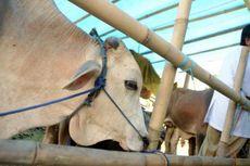 DKP3 Tangsel Akan Awasi Protokol Kesehatan Pedagang Hewan Kurban