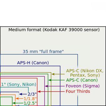 Perbandingan ukuran sensor gambar yang biasa dipakai di produk-produk kamera digital.