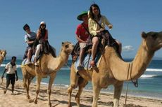 Liburan di Bali Naik Unta, Gajah, sampai Kuda