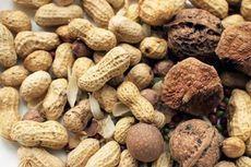 Mahasiswi Ini Teliti Kulit Kacang Sebagai Bahan Bakar