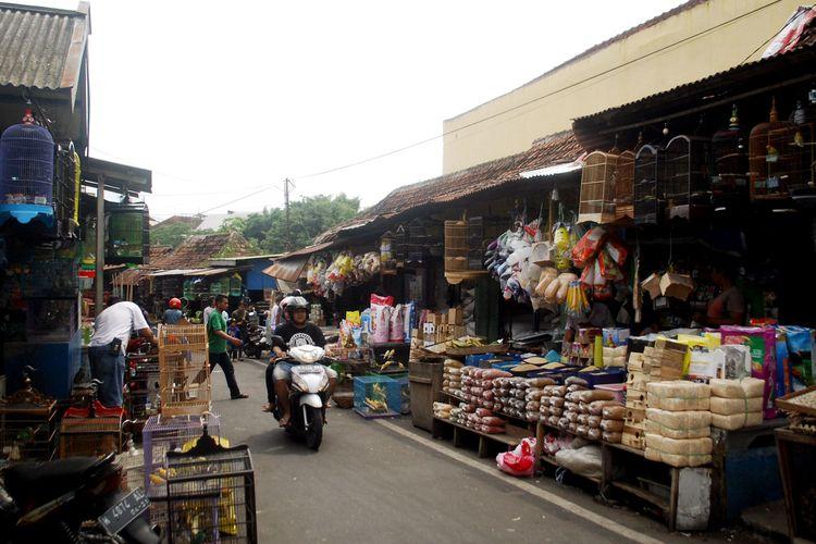 Pasar Burung splendid di Kota malang dahulu bernama Pasar Senggol.