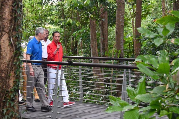 Presiden Joko Widodo dan PM Singapura Lee Hsien Loong jalan-jalan pagi di Singapore Botanical Garden, Kamis (7/9/2017).