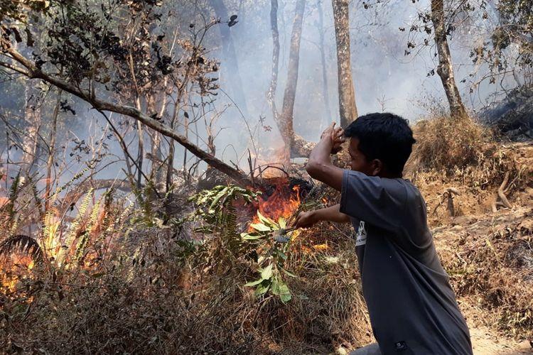 Petugas memadamkan api di hutan Gunung Rinjani, Minggu (20/10/2019).