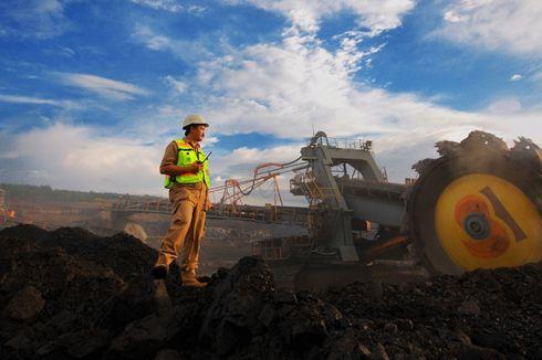 Bukit Asam Sebut Gasifikasi Batu Bara Dapat Tarik Investor hingga Tekan Impor Elpiji 1 Juta Ton per Tahun