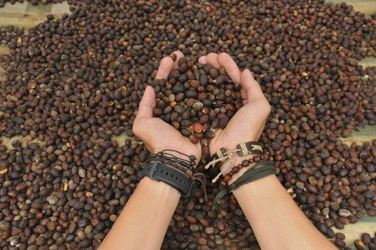 Kopi Canggah merupakan kopi arabika produksi masyarakat Desa Cupunagara, Kecamatan Cisalak, Kabupaten Subang, Jawa Barat.