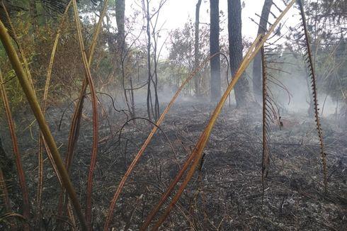 Sebagian Kawasan Hutan Lindung Gunung Slamet yang Terbakar Berhasil Dipadamkan