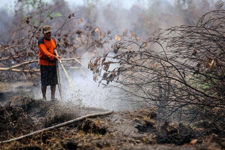 Warga melakukan pemadaman kebakaran lahan gambut di desa Ganepo, Kabupaten Kotawaringin Timur, Kalimantan Tengah, Rabu (2/10/2019).Kebakaran hutan dan lahan di sejumlah wilayah Provinsi Kalteng masih terjadi meski hujan mulai turun.
