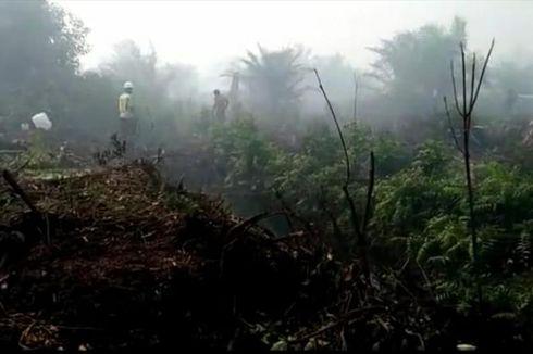 Kabut Asap Karhutla di Pelalawan Riau Makin Parah, Jarak Pandang 800 Meter