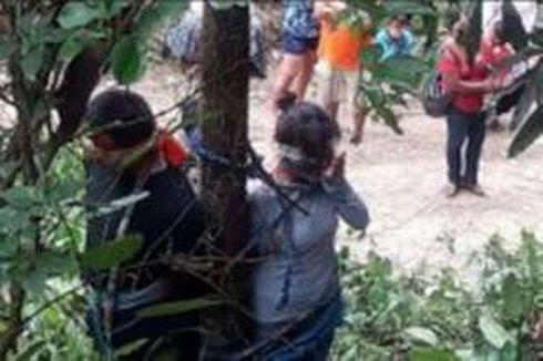 Dituduh Mencuri Mobil, Wanita Ini Diikat di Pohon dan Digigiti Semut hingga Tewas