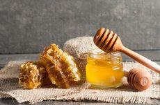 Risiko Makan Sarang Lebah Madu Berlebihan, Muncul Reaksi Alergi