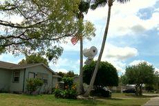 Sindir Panic Buying, Seorang Pria di Florida Gantung Tisu Toilet Besar di Depan Rumahnya