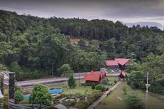 Itinerary 3 Hari 2 Malam di Kendari, Menyusuri Mangrove Bungkutoko