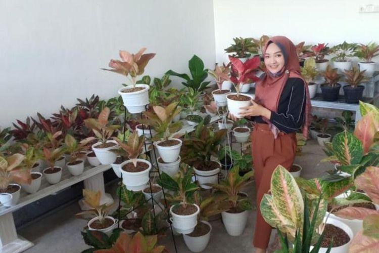 AGLONEMA—Eka Setyawati, warga Jalan Jambu Kota Madiun berada ditengah-tengah koleksi tanaman hias Aglonemanya yang dijual mulai Rp 50.000 hingga jutaan rupiah.