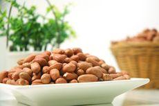Keren, Mahasiswa IPB Inovasi Alat Pemotong Kacang Tanah Tercepat