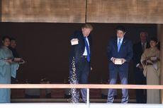 Tuangkan Sekotak Makanan ke Kolam Ikan Koi, Trump Dikecam