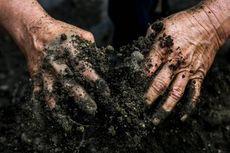 Mengapa Polutan Tanah Berupa Zat Organik Mudah Menyatu dengan Tanah?