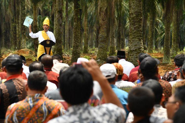 Presiden Joko Widodo meresmikan program Peremajaan Sawit Rakyat seluas 25.423 hektare di Provinsi Riau. Acara peresmian berlaku di Kabupaten Rokan Hilir, Riau, Rabu (9/5/2018).