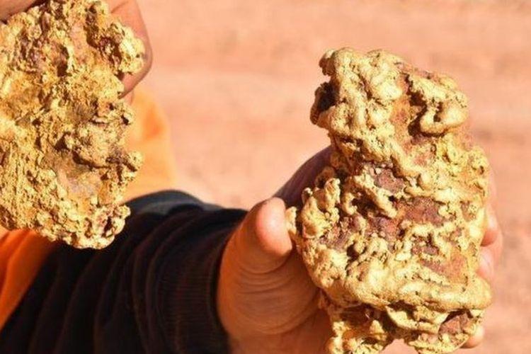Dua bongkah emas yang ditemukan Brent Shannon dan Ethan West di dekat kota tambang emas Tarnagulla di negara bagian Victoria.