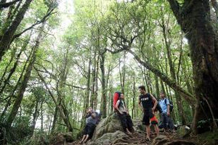 Beberapa pendaki menikmati suasana hutan di Gunung Bawakaraeng, dalam perjalanan menuju Lembah Ramma. Hutan rapat dengan pepohonan besar adalah sebagian keindahan yang dapat dinikmati dalam perjalanan ke Lembah Ramma. Pesona lembah ini sejak beberapa tahun terakhir menarik minat banyak orang untuk berkunjung.